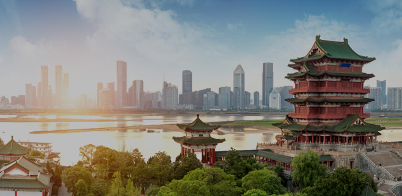 中国国内のソーシャルリスク監視サービス
